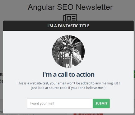 angular-seo-newsletter